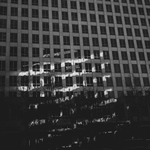 Zebra Lights